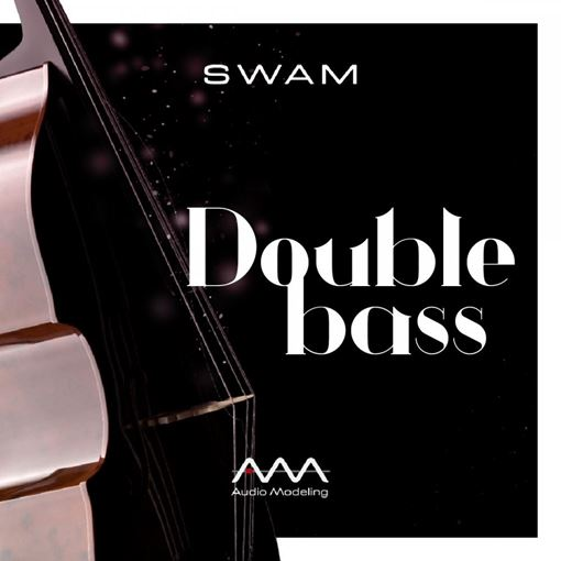 Picture of Audio Modeling SWAM Double Bass Download