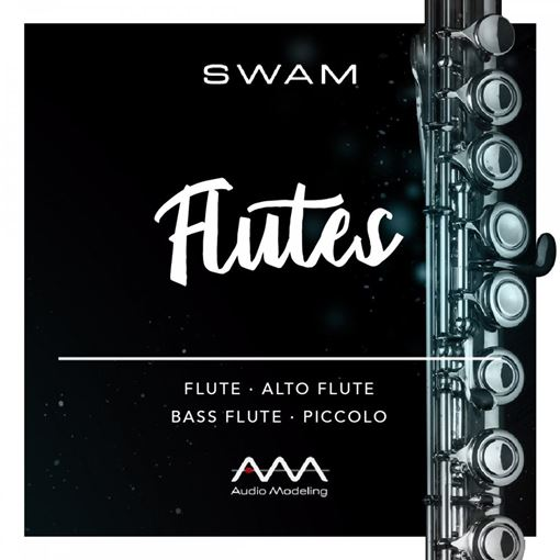 Picture of Audio Modeling SWAM Flutes Download