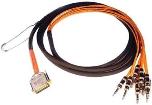 """Picture of Avid DB25-TRS DigiSnake DB25 to 8 x 1/4"""" TRS Snake Cable (12')"""