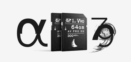 Picture of Angelbird Match Pack for Sony Alpha 7 | Alpha 9 256 GB V90 | 2 PACK