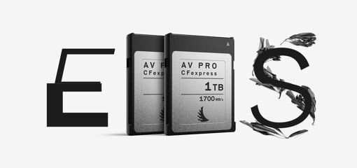 Picture of Angelbird Match Pack for Canon EOS C300 MK3 | C500 MK2 1 TB | 2 PACK
