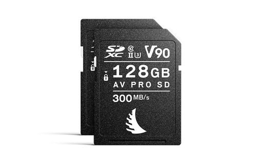 Picture of Angelbird Match Pack for EVA1 128 GB | 2 PACK