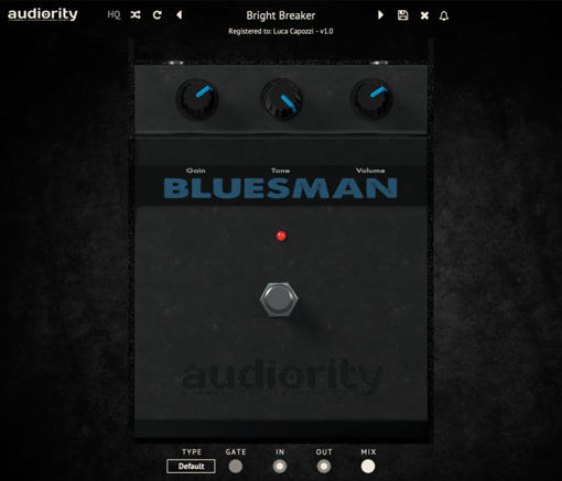 Picture of Audiority The Bluesman Download